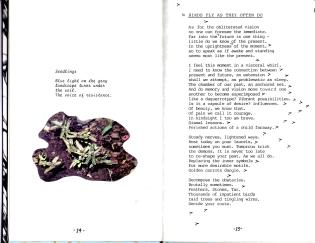 img001 copy 4